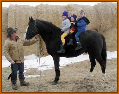 """Here's my sire, Jubal, giving rides to happy kids.  I want to grow up and be just like him some day!"""